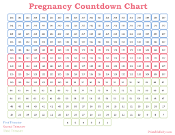 Baby Trimester Chart Printable Pregnancy Countdown Chart