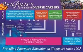 Doctor of Pharmacy   St  John s University