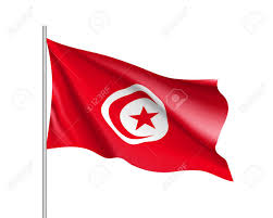 Image result for Tunisia waving flag