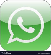 Green Text Bubble Green Phone In Speech Bubble Icon Whatsapp