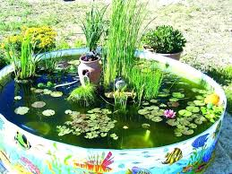 above ground backyard pond kid pool fish bury in the and or hide with pretty rocks