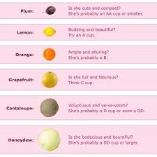 45 Genuine Breast Sizes Compared To Fruits
