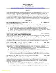 Customer Service Manager Resume New Best Solutions Project Finance