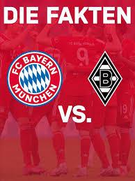 Quarter horse, paint horse, appaloosa, western reiten, westernreiter, reining, verkauf 8 Fakten Zum Bundesliga Heimspiel Fc Bayern Borussia Monchengladbach