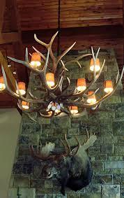 large elk antler chandelier with lamp shades