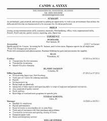 Objectives For Resumes Beauteous Accounting Resume Objectives Resume Sample LiveCareer