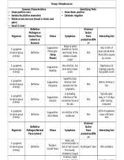 Agpb Chart Docx Group Aerobic Gram Positive Bacilli Common