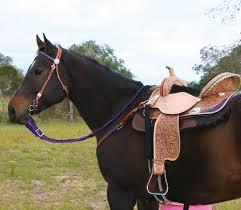 saddle leather care