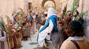Image result for psalm sunday