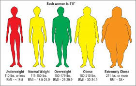 Bmi Categories Visual Depiction Of Bmi Categories For A Woman Who Is 55