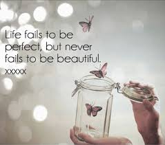 Beauty In Life Quotes Best of Life Is Beautiful Quote