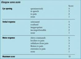 Glasgow Coma Scale Assessment Chart How To Calculate A Glasgow Coma Scale Gcs Score First