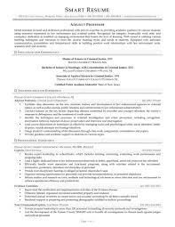 Adjunct Professor Resume Example Adjunct Professor Resume Sugarflesh 13