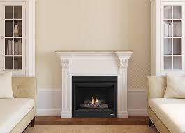 slbv model fireplace