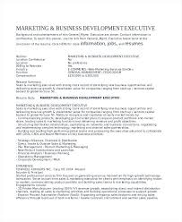 Development Resumes Business Development Resume Summary Samples Corporate Executive