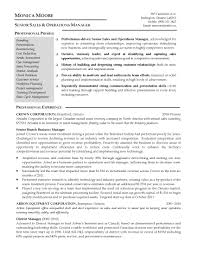 Resume Summary Examples Business Plan Company Overview Example