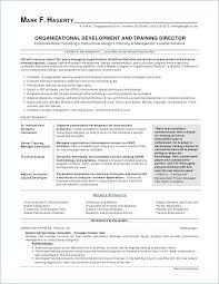 Hvac Resume Impressive Hvac Resume Sample Easy Resume Examples Kidsafefilmsorg