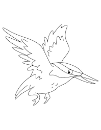 Small Picture Flying kingfisher coloring pages Download Free Flying kingfisher