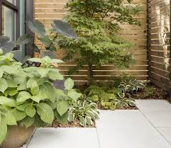 Maintenance Free Garden Designs Low Maintenance Garden Ideas Garden Design Ideas Low