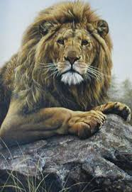 Alan Hunt | Artist - 'the zoologist who paints wildlife'