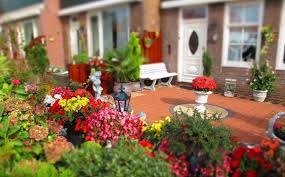15 landscaping ideas for your front