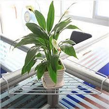 office flower pots. Office Flower Pots. Home / Plant Pots
