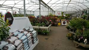 Garden Centre Display Stands Hillmount Garden Centre receives their full RockinColour order 2