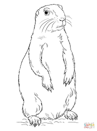 Small Picture Prairie Dog Standing coloring page Free Printable Coloring Pages