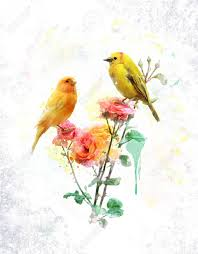 watercolor digital painting of flowers and yellow birds stock photo 32508221