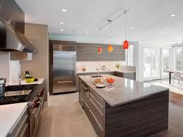 Kitchen Cabinet Door Style Luxury Kitchen Cabinet Door Ideas Greenvirals Style
