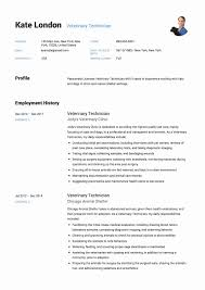 18 Lovely Veterinary Assistant Resume Templates Free Resume Ideas