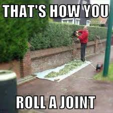 How to roll a joint | Funny Pictures, Quotes, Memes, Jokes via Relatably.com