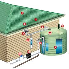 Rainwater Harvesting 101 Your How To Collect Rainwater Guide