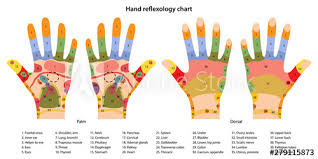 Hand Body Chart Hand Reflexology Chart With Description Of The Corresponding