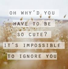 Cute Quotes For Instagram Cool 48 Cute Quotes For Instagram Cute Insta Quotes