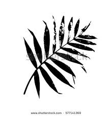 leaf black and white. palm leaf vector illustration. black and white silhouette. isolated leaf.