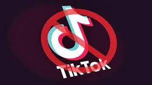TikTok Rating Down: YouTube Supporters ...