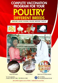 Vaccination Program The Complete Guide For Different Breeds Of Poultry E Book