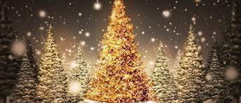 Image result for christmas pictures