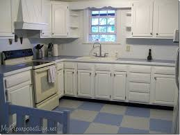Fine Painting Oak Kitchen Cabinets White How I Painted My For Decorating