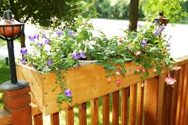 21 best Railing Planters images on Pinterest   Deck railing moreover Top 25  best Railing planters ideas on Pinterest   Balcony railing besides How to Build a Planter Box  to hang from a deck rail    YouTube also Exterior  Beautiful Deck Rail Planters With Fresh Flowers For Home likewise Deck planters   Etsy additionally Amazon     CobraCo Black 24 Inch Antoi te Adjustable Deck Rail likewise Railing Planters 24    Ac modate 1  to 4 25  Thick Deck Railings in addition 60  Charleston Deck Rail Planter also  moreover built in deck planters   Deck Planter Flower Box   Sawdust Therapy together with . on deck rail planters