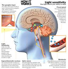 Blue Light Effect On Brain Blue Light A Cause For Insomnia Other Side Effects Dxpnet