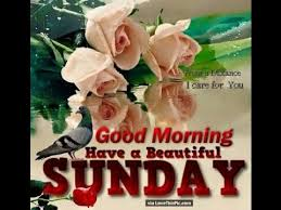 Sunday Good Morning Images With Quotes Best of Happy Good Morning Sunday Wishes SMSQuotesGreetingsMessages