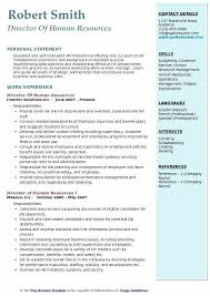 Human Resources Resumes Human Resources Professional Resume Airexpresscarrier Com
