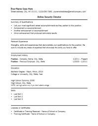 airline security director resume template