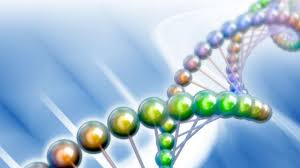 How Many Designer Babies Are There In The World Designer Babies With Dna Changes World First Gene Altered