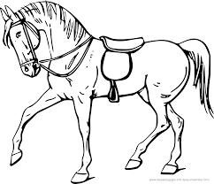 Pferd Stellt Sich Auf Ausmalbild Malvorlage Tiere