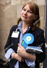 Susan Wade Weeks campaigning votes Editorial Stock Photo - Stock Image    Shutterstock