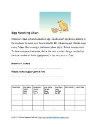 Poultry Incubation Chart Hatch Record Sheet Printable Chicken Health Records