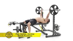Xrs 20 Exercise Chart Golds Gym Xrs 20 Olympic Rack And Bench